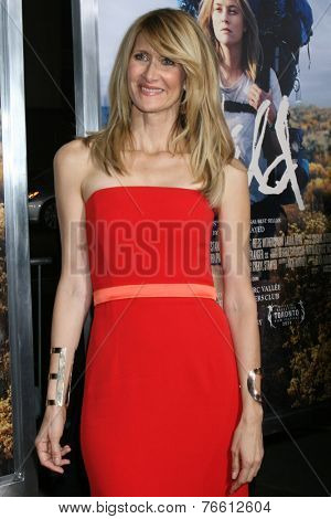 m LOS ANGELES - NOV 19:  Laura Dern at the