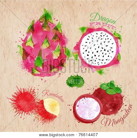 Exotic fruit watercolor dragon fruit, rambutan, mangosteen in kraft