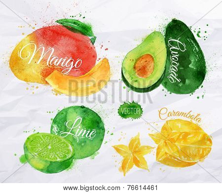 Exotic fruit watercolor mango, avocado, carambola, lime