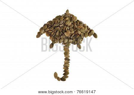 Umbrella Made Of Pumpkin Seeds