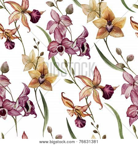 Beautiful orchid flower8