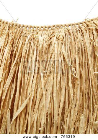 Hawaiian luau - grass hula skirt