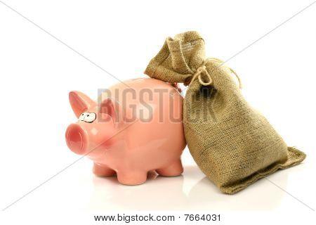 pink piggy bank and a moneybag