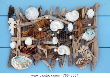 Sea shell, seaweed, pearl and driftwood abstract collage on wooden blue background.