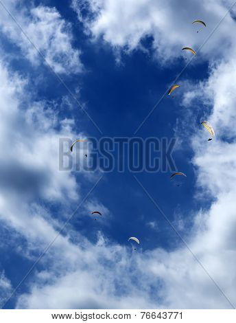 Paragliders In The Air...
