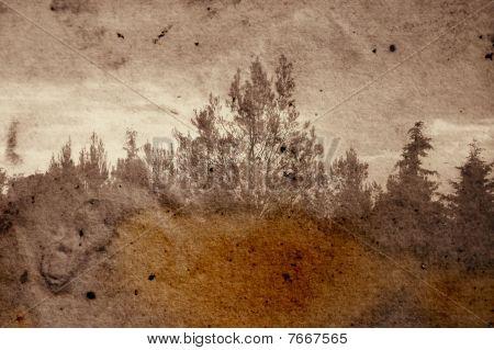 Floresta de desvanecimento
