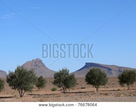 Peculiar Mountain Formation In Moroccan Atlas