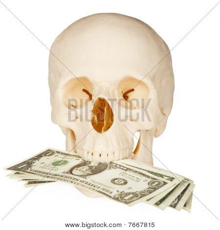 Skull Devours Money, Isolated On White