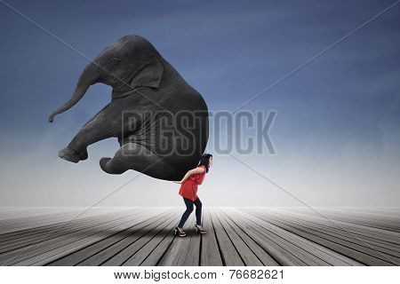 Beautiful Woman Carrying Elephant
