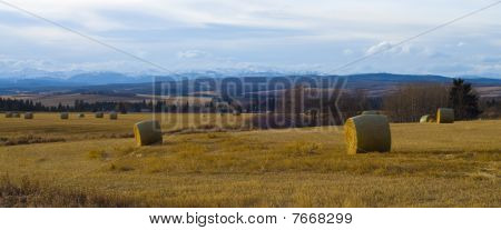 Rocky Mountain View in Alberta Praire