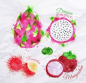 stock photo of fruits  - Exotic fruit set drawn watercolor blots and stains with a spray dragon fruit - JPG