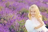 picture of lavender field  - happy girl running in the lavender field - JPG
