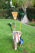 stock photo of pooper  - Yard working and gardening tools on green grass and a well groomed yard - JPG