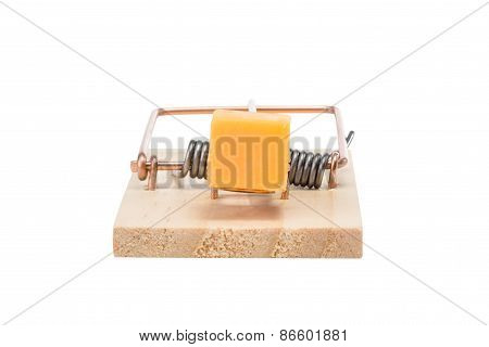 Mousetrap With Cheddar Cheese - Isolated