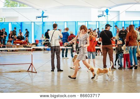 People and dogs visit exhibition -International dog show, import