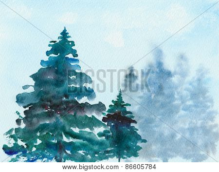 Spruce Christmas trees in the forest, watercolor, illustration.