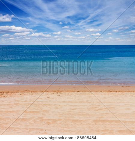 sea shore with blue sky