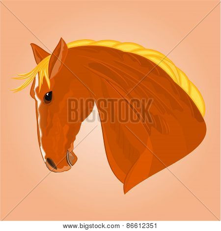 The Red Horse Head Vector