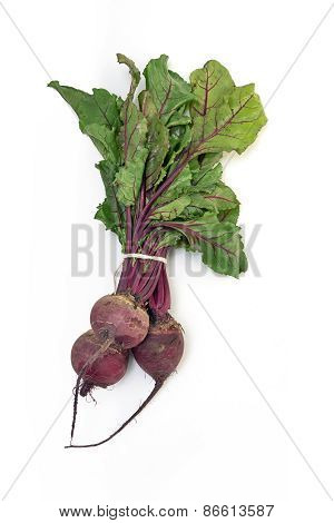Fresh Beetroot Bunch