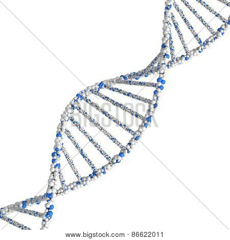 DNA molecule. 3d render on a white background