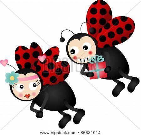 Cute ladybirds in love