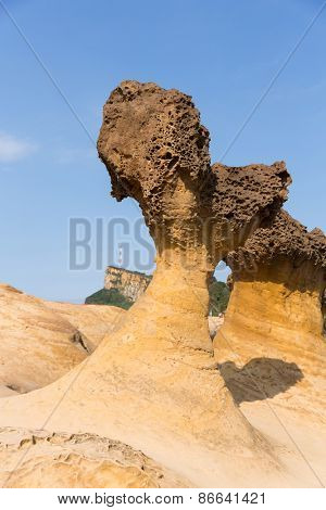 rocks in Yehliu geopark, Taiwan