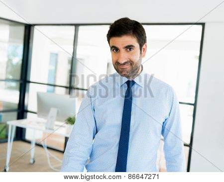 Young businessman in office standing and smiling
