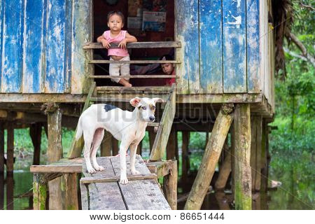 Dog And Children