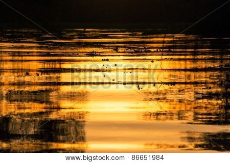 Fiery Orange Sunset Reflection
