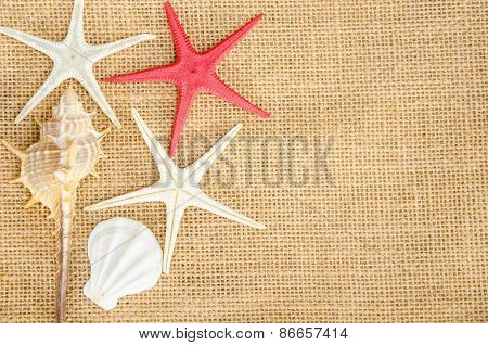 Shells And Star Fish On Sack Background.