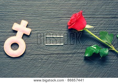 Feminine Symbol, Women,  Red Rose