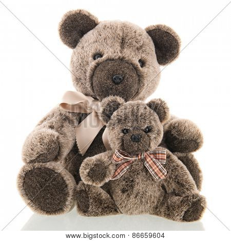 Stuffed father and son bear isolated over white background