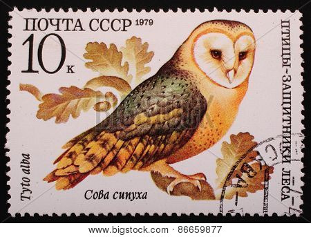 Moscow, Ussr-circa 1979: Postage Stamp Printed Mail Ussr Shows Image Of A Bird Owl Barn Owl Protecto