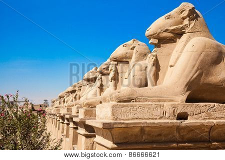Avenue Of The Ram-headed Sphinxes. Karnak Temple. Luxor, Egypt