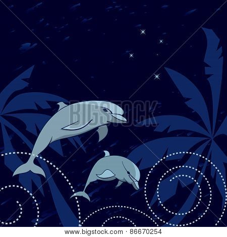 Dolphins And Southern Cross