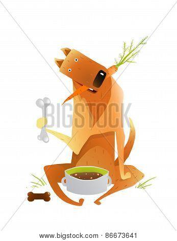 Feeding Happy Red Dog Healthy Balanced Diet