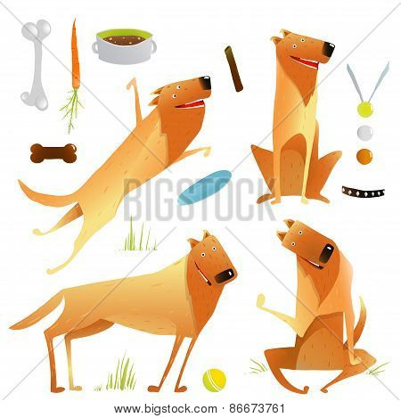 Funny Dogs Jumping Playing with Ball Sitting Winning Feeding Clip Art Set
