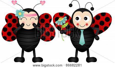 Loving ladybirds