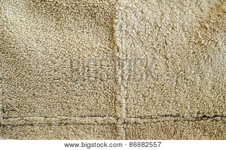 Sheepskin background texture