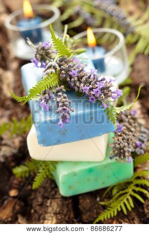 Lavender And Fern Soap.