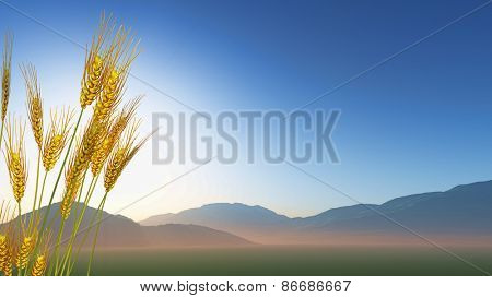 3D render of wheat with hills in the distance