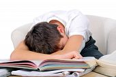 image of fatigue  - Tired Student sleep on the School Desk on the White Background - JPG
