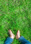 stock photo of baby feet  - Baby feet barefoot on green grass sunlight legs with jeans view from the top vertical - JPG