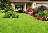 picture of manicured lawn  - A carefuly kept front yard showing summer colours - JPG