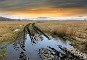 stock photo of steppes  - dirt road in steppe after rain - JPG