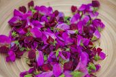 pic of sweet pea  - sweet peas flowers gourmet cooking ingredients - JPG