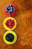 picture of blackberries  - berry assortment  - JPG