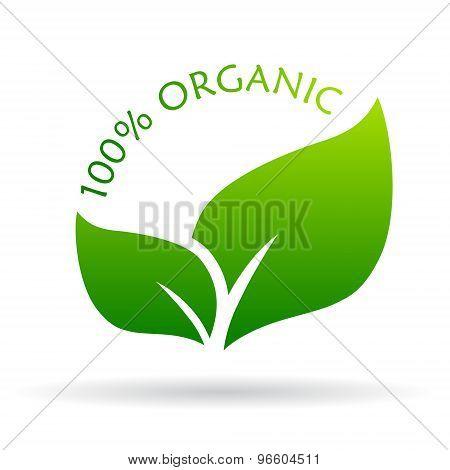 100 organic icon