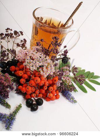 herbal tea 3