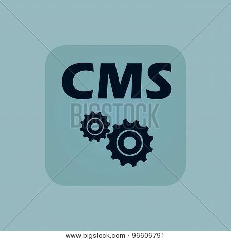 Pale blue CMS settings icon